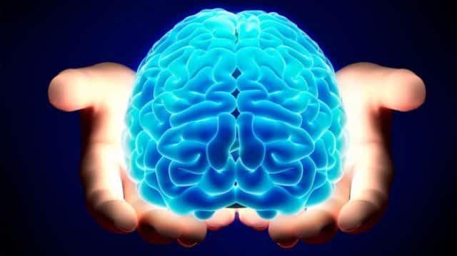Quale emisfero del cervello predomina in te?