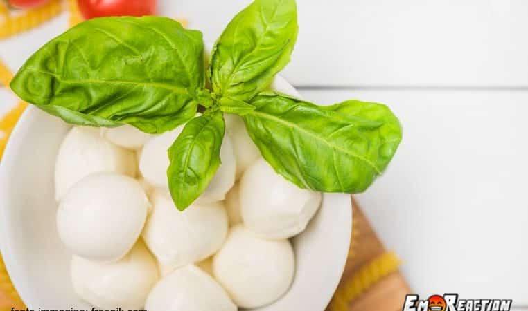 Mozzarella di bufala o fior di latte: quale dei due contiene meno lattosio?